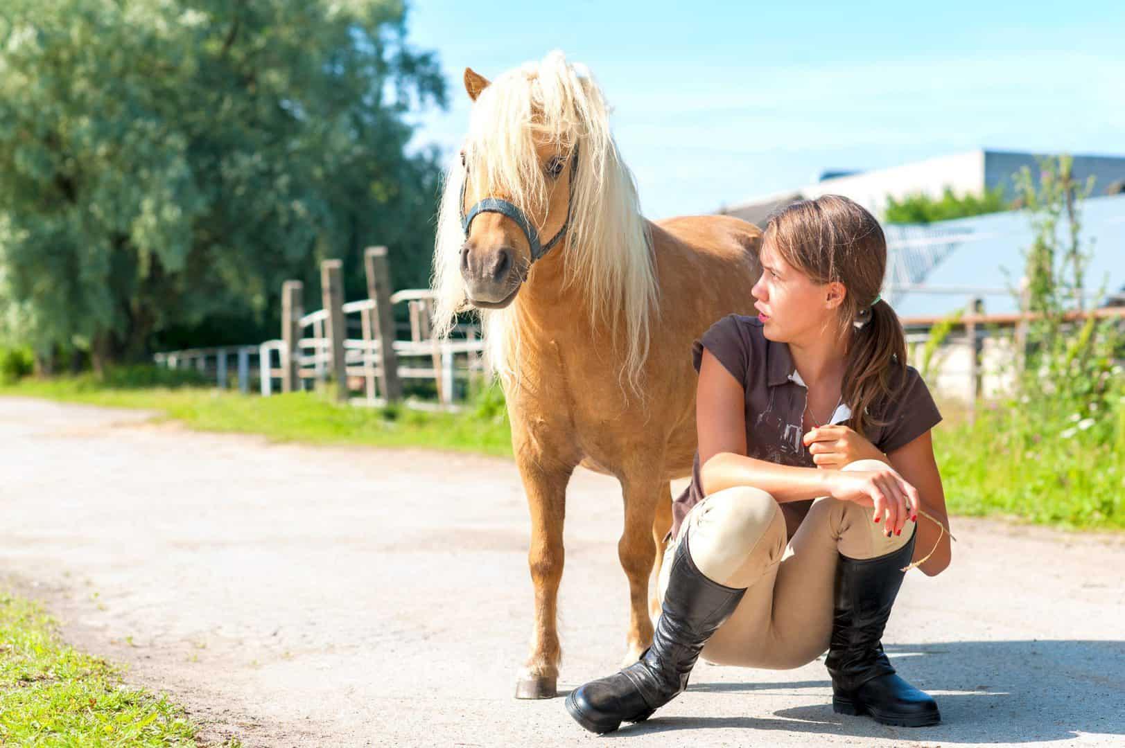 praten met een pony